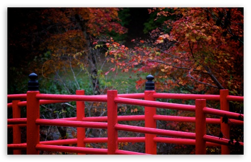 Red Japanese Bridge HD wallpaper for Wide 16:10 5:3 Widescreen WHXGA WQXGA WUXGA WXGA WGA ; HD 16:9 High Definition WQHD QWXGA 1080p 900p 720p QHD nHD ; UHD 16:9 WQHD QWXGA 1080p 900p 720p QHD nHD ; Standard 4:3 5:4 3:2 Fullscreen UXGA XGA SVGA QSXGA SXGA DVGA HVGA HQVGA devices ( Apple PowerBook G4 iPhone 4 3G 3GS iPod Touch ) ; Tablet 1:1 ; iPad 1/2/Mini ; Mobile 4:3 5:3 3:2 16:9 5:4 - UXGA XGA SVGA WGA DVGA HVGA HQVGA devices ( Apple PowerBook G4 iPhone 4 3G 3GS iPod Touch ) WQHD QWXGA 1080p 900p 720p QHD nHD QSXGA SXGA ; Dual 5:4 QSXGA SXGA ;
