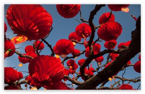 Red Paper Lanterns Tree ❤ 4K UHD Wallpaper for Wide 16:10 5:3 Widescreen WHXGA WQXGA WUXGA WXGA WGA ; 4K UHD 16:9 Ultra High Definition 2160p 1440p 1080p 900p 720p ; UHD 16:9 2160p 1440p 1080p 900p 720p ; Standard 4:3 5:4 3:2 Fullscreen UXGA XGA SVGA QSXGA SXGA DVGA HVGA HQVGA ( Apple PowerBook G4 iPhone 4 3G 3GS iPod Touch ) ; Smartphone 5:3 WGA ; Tablet 1:1 ; iPad 1/2/Mini ; Mobile 4:3 5:3 3:2 16:9 5:4 - UXGA XGA SVGA WGA DVGA HVGA HQVGA ( Apple PowerBook G4 iPhone 4 3G 3GS iPod Touch ) 2160p 1440p 1080p 900p 720p QSXGA SXGA ;