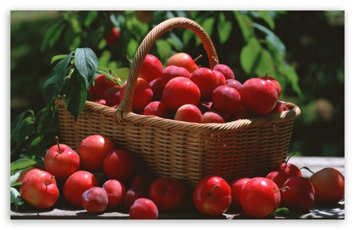 Red Plums In A Basket HD wallpaper for Wide 16:10 5:3 Widescreen WHXGA WQXGA WUXGA WXGA WGA ; HD 16:9 High Definition WQHD QWXGA 1080p 900p 720p QHD nHD ; Standard 4:3 5:4 3:2 Fullscreen UXGA XGA SVGA QSXGA SXGA DVGA HVGA HQVGA devices ( Apple PowerBook G4 iPhone 4 3G 3GS iPod Touch ) ; Tablet 1:1 ; iPad 1/2/Mini ; Mobile 4:3 5:3 3:2 16:9 5:4 - UXGA XGA SVGA WGA DVGA HVGA HQVGA devices ( Apple PowerBook G4 iPhone 4 3G 3GS iPod Touch ) WQHD QWXGA 1080p 900p 720p QHD nHD QSXGA SXGA ;