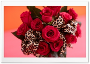 Red Roses Bouquet, Leopard Print Ribbon HD Wide Wallpaper for Widescreen