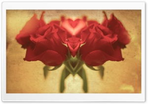 Red Roses Heart HD Wide Wallpaper for Widescreen