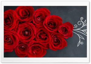 Red Roses on a Chalkboard HD Wide Wallpaper for Widescreen