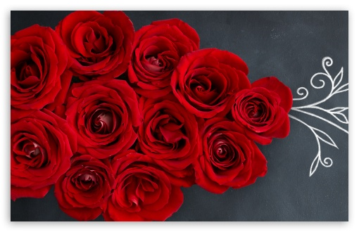 Red Roses on a Chalkboard ❤ 4K UHD Wallpaper for Wide 16:10 5:3 Widescreen WHXGA WQXGA WUXGA WXGA WGA ; 4K UHD 16:9 Ultra High Definition 2160p 1440p 1080p 900p 720p ; Standard 4:3 5:4 3:2 Fullscreen UXGA XGA SVGA QSXGA SXGA DVGA HVGA HQVGA ( Apple PowerBook G4 iPhone 4 3G 3GS iPod Touch ) ; Smartphone 3:2 5:3 DVGA HVGA HQVGA ( Apple PowerBook G4 iPhone 4 3G 3GS iPod Touch ) WGA ; Tablet 1:1 ; iPad 1/2/Mini ; Mobile 4:3 5:3 3:2 16:9 5:4 - UXGA XGA SVGA WGA DVGA HVGA HQVGA ( Apple PowerBook G4 iPhone 4 3G 3GS iPod Touch ) 2160p 1440p 1080p 900p 720p QSXGA SXGA ;