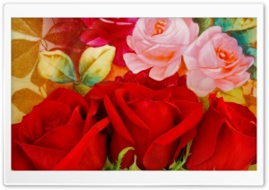 Red Roses On A Painted Plate HD Wide Wallpaper for Widescreen