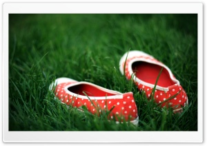 Red Shoes In Green Grass HD Wide Wallpaper for 4K UHD Widescreen desktop & smartphone
