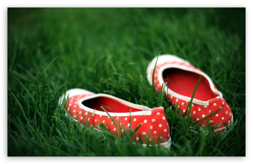 Red Shoes In Green Grass HD wallpaper for Wide 16:10 5:3 Widescreen WHXGA WQXGA WUXGA WXGA WGA ; HD 16:9 High Definition WQHD QWXGA 1080p 900p 720p QHD nHD ; Standard 4:3 5:4 3:2 Fullscreen UXGA XGA SVGA QSXGA SXGA DVGA HVGA HQVGA devices ( Apple PowerBook G4 iPhone 4 3G 3GS iPod Touch ) ; iPad 1/2/Mini ; Mobile 4:3 5:3 3:2 16:9 5:4 - UXGA XGA SVGA WGA DVGA HVGA HQVGA devices ( Apple PowerBook G4 iPhone 4 3G 3GS iPod Touch ) WQHD QWXGA 1080p 900p 720p QHD nHD QSXGA SXGA ;