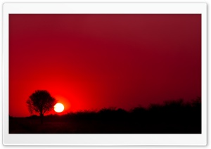Red Sunset, Botswana, Africa HD Wide Wallpaper for Widescreen