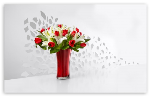 Red Tulips and White Lilies Flowers  In A Vase UltraHD Wallpaper for Wide 16:10 5:3 Widescreen WHXGA WQXGA WUXGA WXGA WGA ; 8K UHD TV 16:9 Ultra High Definition 2160p 1440p 1080p 900p 720p ; UHD 16:9 2160p 1440p 1080p 900p 720p ; Standard 4:3 5:4 3:2 Fullscreen UXGA XGA SVGA QSXGA SXGA DVGA HVGA HQVGA ( Apple PowerBook G4 iPhone 4 3G 3GS iPod Touch ) ; Smartphone 3:2 5:3 DVGA HVGA HQVGA ( Apple PowerBook G4 iPhone 4 3G 3GS iPod Touch ) WGA ; Tablet 1:1 ; iPad 1/2/Mini ; Mobile 4:3 5:3 3:2 16:9 5:4 - UXGA XGA SVGA WGA DVGA HVGA HQVGA ( Apple PowerBook G4 iPhone 4 3G 3GS iPod Touch ) 2160p 1440p 1080p 900p 720p QSXGA SXGA ; Dual 16:10 5:3 16:9 4:3 5:4 WHXGA WQXGA WUXGA WXGA WGA 2160p 1440p 1080p 900p 720p UXGA XGA SVGA QSXGA SXGA ;