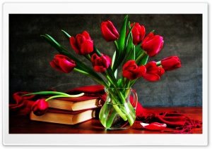 Red Tulips In A Vase On The Table HD Wide Wallpaper for Widescreen
