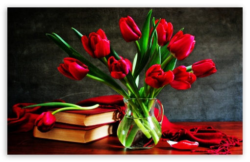 Red Tulips In A Vase On The Table HD wallpaper for Wide 16:10 5:3 Widescreen WHXGA WQXGA WUXGA WXGA WGA ; HD 16:9 High Definition WQHD QWXGA 1080p 900p 720p QHD nHD ; Standard 4:3 5:4 3:2 Fullscreen UXGA XGA SVGA QSXGA SXGA DVGA HVGA HQVGA devices ( Apple PowerBook G4 iPhone 4 3G 3GS iPod Touch ) ; Tablet 1:1 ; iPad 1/2/Mini ; Mobile 4:3 5:3 3:2 16:9 5:4 - UXGA XGA SVGA WGA DVGA HVGA HQVGA devices ( Apple PowerBook G4 iPhone 4 3G 3GS iPod Touch ) WQHD QWXGA 1080p 900p 720p QHD nHD QSXGA SXGA ;