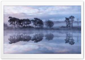 Reflections in the Mist HD Wide Wallpaper for Widescreen