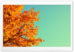 Retro Autumn HD Wide Wallpaper for Widescreen