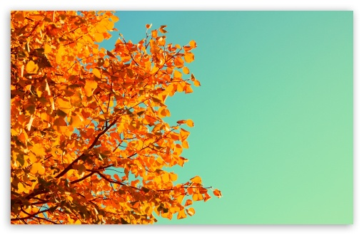 vintage fall backgrounds with - photo #23