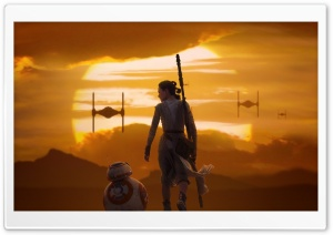 Rey  BB 8 Star Wars The Force Awakens HD Wide Wallpaper for Widescreen