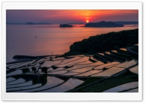 Rice Terraces at Sunset HD Wide Wallpaper for Widescreen