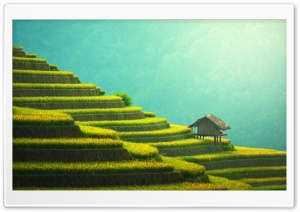 Rice Terraces Mountain Landscape HD Wide Wallpaper for Widescreen