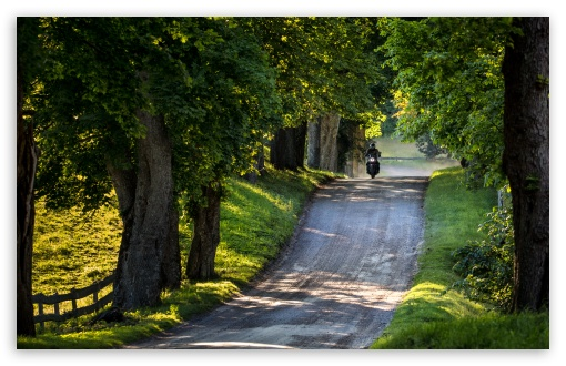 Ride, Country Road, Trees, Summer UltraHD Wallpaper for Wide 16:10 5:3 Widescreen WHXGA WQXGA WUXGA WXGA WGA ; UltraWide 21:9 24:10 ; 8K UHD TV 16:9 Ultra High Definition 2160p 1440p 1080p 900p 720p ; UHD 16:9 2160p 1440p 1080p 900p 720p ; Standard 4:3 5:4 3:2 Fullscreen UXGA XGA SVGA QSXGA SXGA DVGA HVGA HQVGA ( Apple PowerBook G4 iPhone 4 3G 3GS iPod Touch ) ; Smartphone 16:9 3:2 5:3 2160p 1440p 1080p 900p 720p DVGA HVGA HQVGA ( Apple PowerBook G4 iPhone 4 3G 3GS iPod Touch ) WGA ; Tablet 1:1 ; iPad 1/2/Mini ; Mobile 4:3 5:3 3:2 16:9 5:4 - UXGA XGA SVGA WGA DVGA HVGA HQVGA ( Apple PowerBook G4 iPhone 4 3G 3GS iPod Touch ) 2160p 1440p 1080p 900p 720p QSXGA SXGA ;
