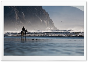 Riding On The Beach HD Wide Wallpaper for Widescreen