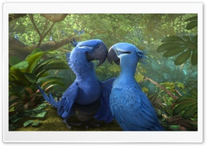 Rio 2 Blu and Jewel HD Wide Wallpaper for Widescreen