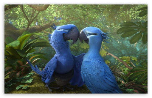 Rio 2 Blu and Jewel HD wallpaper for Wide 16:10 5:3 Widescreen WHXGA WQXGA WUXGA WXGA WGA ; HD 16:9 High Definition WQHD QWXGA 1080p 900p 720p QHD nHD ; Standard 4:3 5:4 3:2 Fullscreen UXGA XGA SVGA QSXGA SXGA DVGA HVGA HQVGA devices ( Apple PowerBook G4 iPhone 4 3G 3GS iPod Touch ) ; Tablet 1:1 ; iPad 1/2/Mini ; Mobile 4:3 5:3 3:2 16:9 5:4 - UXGA XGA SVGA WGA DVGA HVGA HQVGA devices ( Apple PowerBook G4 iPhone 4 3G 3GS iPod Touch ) WQHD QWXGA 1080p 900p 720p QHD nHD QSXGA SXGA ; Dual 16:10 5:3 16:9 4:3 5:4 WHXGA WQXGA WUXGA WXGA WGA WQHD QWXGA 1080p 900p 720p QHD nHD UXGA XGA SVGA QSXGA SXGA ;