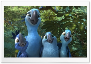 Rio 2 Jewel and Kids HD Wide Wallpaper for Widescreen