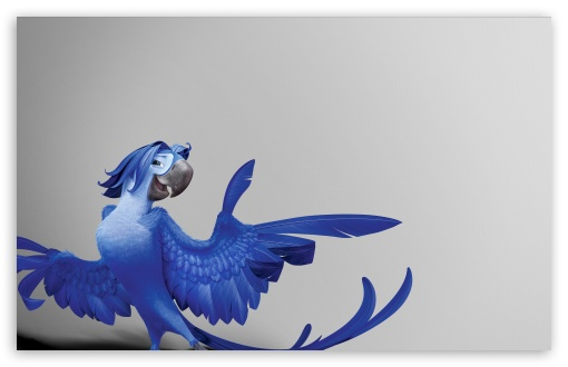 Rio 2 Roberto HD wallpaper for Wide 16:10 5:3 Widescreen WHXGA WQXGA WUXGA WXGA WGA ; HD 16:9 High Definition WQHD QWXGA 1080p 900p 720p QHD nHD ; Standard 4:3 5:4 Fullscreen UXGA XGA SVGA QSXGA SXGA ; MS 3:2 DVGA HVGA HQVGA devices ( Apple PowerBook G4 iPhone 4 3G 3GS iPod Touch ) ; Mobile VGA WVGA iPhone iPad PSP Phone - VGA QVGA Smartphone ( PocketPC GPS iPod Zune BlackBerry HTC Samsung LG Nokia Eten Asus ) WVGA WQVGA Smartphone ( HTC Samsung Sony Ericsson LG Vertu MIO ) HVGA Smartphone ( Apple iPhone iPod BlackBerry HTC Samsung Nokia ) Sony PSP Zune HD Zen ; Tablet 1&2 ;