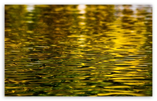 Ripples HD wallpaper for Standard 4:3 5:4 Fullscreen UXGA XGA SVGA QSXGA SXGA ; Wide 16:10 5:3 Widescreen WHXGA WQXGA WUXGA WXGA WGA ; HD 16:9 High Definition WQHD QWXGA 1080p 900p 720p QHD nHD ; Other 3:2 DVGA HVGA HQVGA devices ( Apple PowerBook G4 iPhone 4 3G 3GS iPod Touch ) ; Mobile VGA WVGA iPhone iPad PSP Phone - VGA QVGA Smartphone ( PocketPC GPS iPod Zune BlackBerry HTC Samsung LG Nokia Eten Asus ) WVGA WQVGA Smartphone ( HTC Samsung Sony Ericsson LG Vertu MIO ) HVGA Smartphone ( Apple iPhone iPod BlackBerry HTC Samsung Nokia ) Sony PSP Zune HD Zen ; Tablet 2 Android 3 DVGA HVGA HQVGA devices ( Apple PowerBook G4 iPhone 4 3G 3GS iPod Touch ) ; Dual 4:3 5:4 16:10 5:3 16:9 UXGA XGA SVGA QSXGA SXGA WHXGA WQXGA WUXGA WXGA WGA WQHD QWXGA 1080p 900p 720p QHD nHD ;