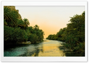 River And Palm Trees HD Wide Wallpaper for Widescreen