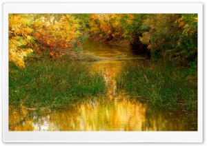 River Nature HD Wide Wallpaper for Widescreen
