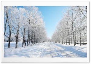 Road Covered With Snow HD Wide Wallpaper for Widescreen