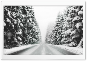Road, Forest, Snow, Winter Landscape, Black and White HD Wide Wallpaper for 4K UHD Widescreen desktop & smartphone