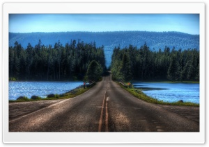 Road In Yellowstone, Montana HD Wide Wallpaper for Widescreen