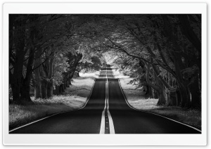 Road Landscape, Aesthetic, Black and White Ultra HD Wallpaper for 4K UHD Widescreen desktop, tablet & smartphone