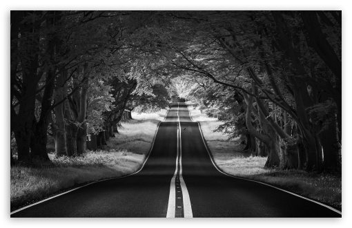 Road Landscape Aesthetic Black And White 4k Hd Desktop