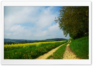 Road On The Hills Summer HD Wide Wallpaper for Widescreen