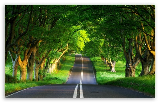 Road, Summer HD wallpaper for Wide 16:10 5:3 Widescreen WHXGA WQXGA WUXGA WXGA WGA ; HD 16:9 High Definition WQHD QWXGA 1080p 900p 720p QHD nHD ; Standard 4:3 5:4 3:2 Fullscreen UXGA XGA SVGA QSXGA SXGA DVGA HVGA HQVGA devices ( Apple PowerBook G4 iPhone 4 3G 3GS iPod Touch ) ; Tablet 1:1 ; iPad 1/2/Mini ; Mobile 4:3 5:3 3:2 16:9 5:4 - UXGA XGA SVGA WGA DVGA HVGA HQVGA devices ( Apple PowerBook G4 iPhone 4 3G 3GS iPod Touch ) WQHD QWXGA 1080p 900p 720p QHD nHD QSXGA SXGA ;