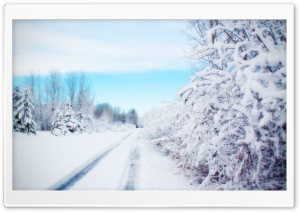Road, Winter HD Wide Wallpaper for 4K UHD Widescreen desktop & smartphone