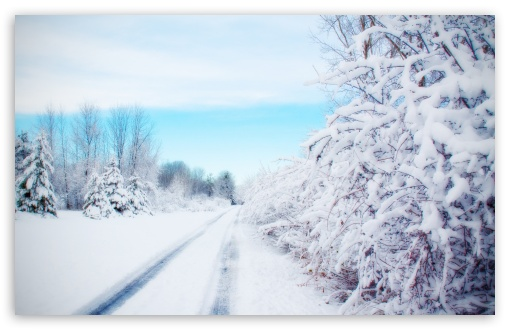 Road, Winter ❤ 4K UHD Wallpaper for Wide 16:10 5:3 Widescreen WHXGA WQXGA WUXGA WXGA WGA ; 4K UHD 16:9 Ultra High Definition 2160p 1440p 1080p 900p 720p ; Standard 4:3 5:4 3:2 Fullscreen UXGA XGA SVGA QSXGA SXGA DVGA HVGA HQVGA ( Apple PowerBook G4 iPhone 4 3G 3GS iPod Touch ) ; Smartphone 5:3 WGA ; Tablet 1:1 ; iPad 1/2/Mini ; Mobile 4:3 5:3 3:2 16:9 5:4 - UXGA XGA SVGA WGA DVGA HVGA HQVGA ( Apple PowerBook G4 iPhone 4 3G 3GS iPod Touch ) 2160p 1440p 1080p 900p 720p QSXGA SXGA ;