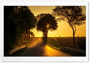 Road, Yellow Sunlight HD Wide Wallpaper for 4K UHD Widescreen desktop & smartphone