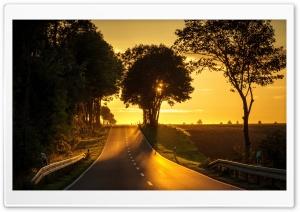 Road, Yellow Sunlight Ultra HD Wallpaper for 4K UHD Widescreen desktop, tablet & smartphone