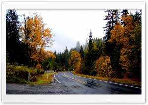 Roadscape Nature HD Wide Wallpaper for Widescreen