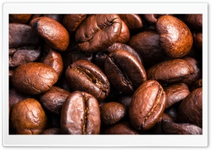Roasted Coffee Beans HD Wide Wallpaper for 4K UHD Widescreen desktop & smartphone