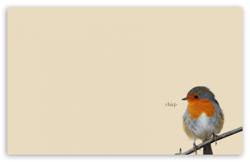 Robin ❤ 4K UHD Wallpaper for Wide 16:10 5:3 Widescreen WHXGA WQXGA WUXGA WXGA WGA ; 4K UHD 16:9 Ultra High Definition 2160p 1440p 1080p 900p 720p ; Standard 4:3 5:4 3:2 Fullscreen UXGA XGA SVGA QSXGA SXGA DVGA HVGA HQVGA ( Apple PowerBook G4 iPhone 4 3G 3GS iPod Touch ) ; Tablet 1:1 ; iPad 1/2/Mini ; Mobile 4:3 5:3 3:2 16:9 5:4 - UXGA XGA SVGA WGA DVGA HVGA HQVGA ( Apple PowerBook G4 iPhone 4 3G 3GS iPod Touch ) 2160p 1440p 1080p 900p 720p QSXGA SXGA ;