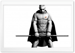 Robin Arkham City HD Wide Wallpaper for Widescreen
