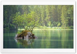 Rock Island, Forest Lake Ultra HD Wallpaper for 4K UHD Widescreen desktop, tablet & smartphone
