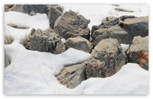 Rocks On The Snow HD wallpaper for Wide 16:10 5:3 Widescreen WHXGA WQXGA WUXGA WXGA WGA ; HD 16:9 High Definition WQHD QWXGA 1080p 900p 720p QHD nHD ; Standard 4:3 5:4 3:2 Fullscreen UXGA XGA SVGA QSXGA SXGA DVGA HVGA HQVGA devices ( Apple PowerBook G4 iPhone 4 3G 3GS iPod Touch ) ; Tablet 1:1 ; iPad 1/2/Mini ; Mobile 4:3 5:3 3:2 16:9 5:4 - UXGA XGA SVGA WGA DVGA HVGA HQVGA devices ( Apple PowerBook G4 iPhone 4 3G 3GS iPod Touch ) WQHD QWXGA 1080p 900p 720p QHD nHD QSXGA SXGA ;
