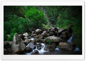 Rocky Forest Creek HD Wide Wallpaper for 4K UHD Widescreen desktop & smartphone