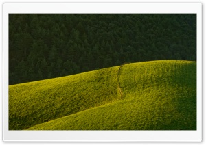 Rolling Green Hills HD Wide Wallpaper for Widescreen