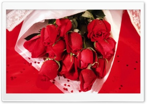 Romantic Roses Bouquet HD Wide Wallpaper for Widescreen