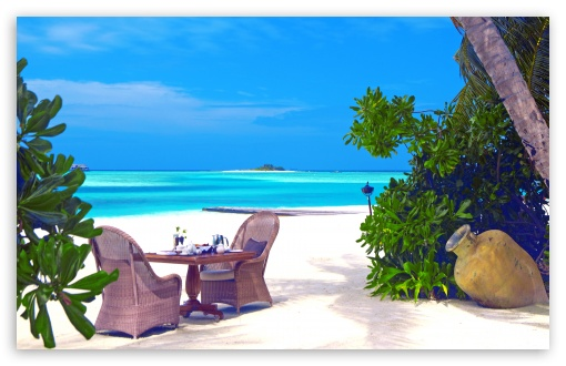 Romantic Tropical Lunch ❤ 4K UHD Wallpaper for Wide 16:10 5:3 Widescreen WHXGA WQXGA WUXGA WXGA WGA ; 4K UHD 16:9 Ultra High Definition 2160p 1440p 1080p 900p 720p ; Standard 4:3 5:4 Fullscreen UXGA XGA SVGA QSXGA SXGA ; Tablet 1:1 ; iPad 1/2/Mini ; Mobile 4:3 5:3 3:2 16:9 5:4 - UXGA XGA SVGA WGA DVGA HVGA HQVGA ( Apple PowerBook G4 iPhone 4 3G 3GS iPod Touch ) 2160p 1440p 1080p 900p 720p QSXGA SXGA ;